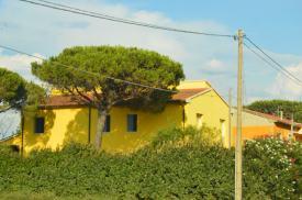 I love the houses!