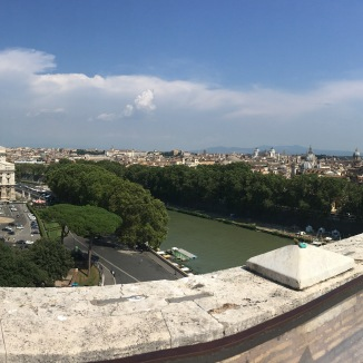 Again, trying to get a panoramic view of Rome - Monkey kept putting his hand in front of my camera!!! :D